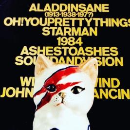David Bowie inspired ceramic cat